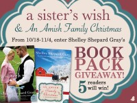 Charmed Amish Life Series Giveaway
